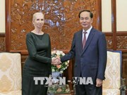 Vietnam treasures ties with Norway: President