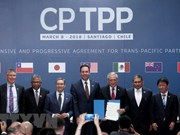Japan parliament enacts bill to complete CPTPP procedures