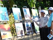 Quang Ngai: Exhibition on Ly Son's sea and islands opens