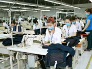 Garment-textile sector raises export target to 35 billion USD