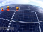 5 trillion VND solar power plant to be built in Ninh Thuan