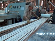 Vietnam's wood sector suffers pressure from China