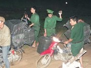 Long An province cracks down on smugglers