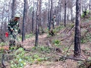 Training course on UXO actions opened for military officials