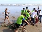 Foreign tourists help clean Mui Ne beach