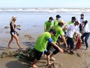Foreign tourists help clean Mui Ne beach