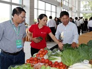 Lao Cai boosts farm produce trade with China's Yunnan