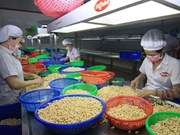 US-China trade war likely to hurt Vietnamese economy