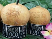 Thailand considers tightening control over coconut imports