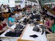Chances for Vietnam's leather industry abundant in 2018
