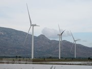Policies encourage renewable energy development