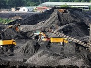 Vinacomin produces over 20 mln tonnes of raw coal from year's start