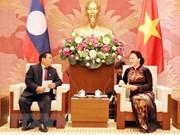 Vietnam's top legislator hosts Lao NA Vice Chairman