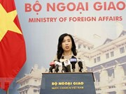 Vietnam applauds Russia-US summit: spokesperson