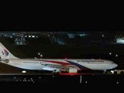 Malaysia Airlines flight forced to turn back due to technical problem