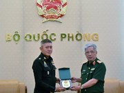 Vietnam treasures defence partnership with Thailand