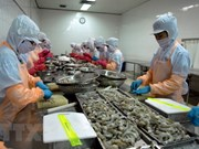 Experts: Vietnam must work hard to meet export targets