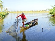 Eco-shrimp farming – model for sustainable aquaculture development