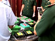 100 bricks of cocaine detected in imported scrap container