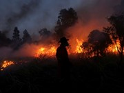 Many wildfire hotspots appear in Indonesia's Sumatra