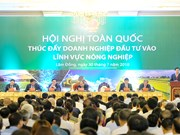 Local agriculture aims for top global 15: PM