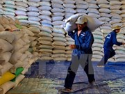 Thanh Hoa to receive over 50,000 tonnes of rice