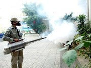 Citizens advised to apply drastic measure against dengue fever