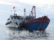 Vietnam pushes drastic measures to fight IUU fishing