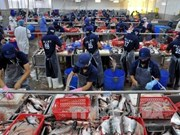 Seafood exports fetch 4.63 billion USD in seven months