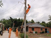 Tay Ninh: 175 billion VND for upgrade of power grid works