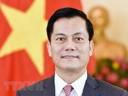 Vietnam-US ties see remarkable progress in all fields: Ambassador
