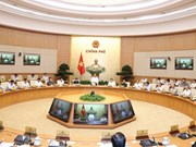 Cabinet members debate institutional development