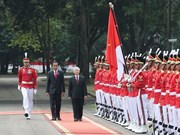 Ambassador spotlights Vietnam-Indonesia friendship