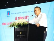 Over 320 mln USD collected from PetroVietnam subsidiaries' IPOs