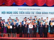 Binh Phuoc licenses 19 projects totalling 1 billion USD