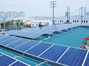 Rooftop solar panels can satisfy half of power demand: experts