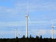 Foreign investors interested in wind power development in Vietnam