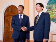 Vietnam wants to bolster traditional relations with Madagascar
