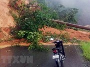Landslide-hit Kon Tum – Laos route reopens to traffic