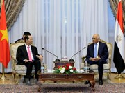Vietnam maintains friendship with Egypt via different channels