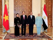 President's visits to Ethiopia, Egypt record upbeat outcomes