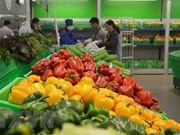 Vegetable, fruit exports hit 2.7 billion USD in eight months