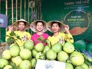 Thua Thien-Hue specialty pomelo is festival highlight