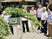 Quang Ninh has first ornamental market