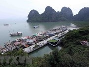 Quang Ninh works to raise quality of tourist ships on Ha Long Bay