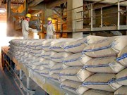 Cement industry records impressive export growth
