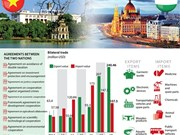 Vietnam-Hungary economic ties have large room to grow