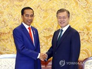 RoK, Indonesia discuss measures to strengthen strategic partnership