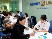 Insurers' total assets reach over 15 billion USD