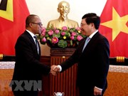 Vietnam, Timor-Leste FMs discuss measures to step up relations
